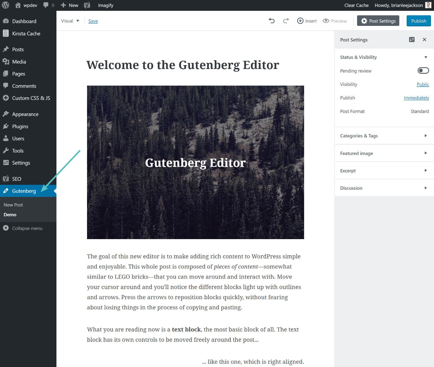 Demo dell'editor Gutenberg