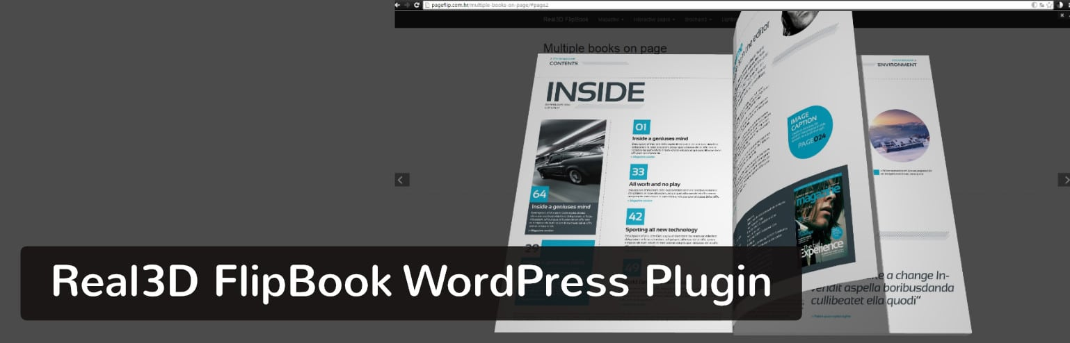Plugin Real3D FlipBook WordPress