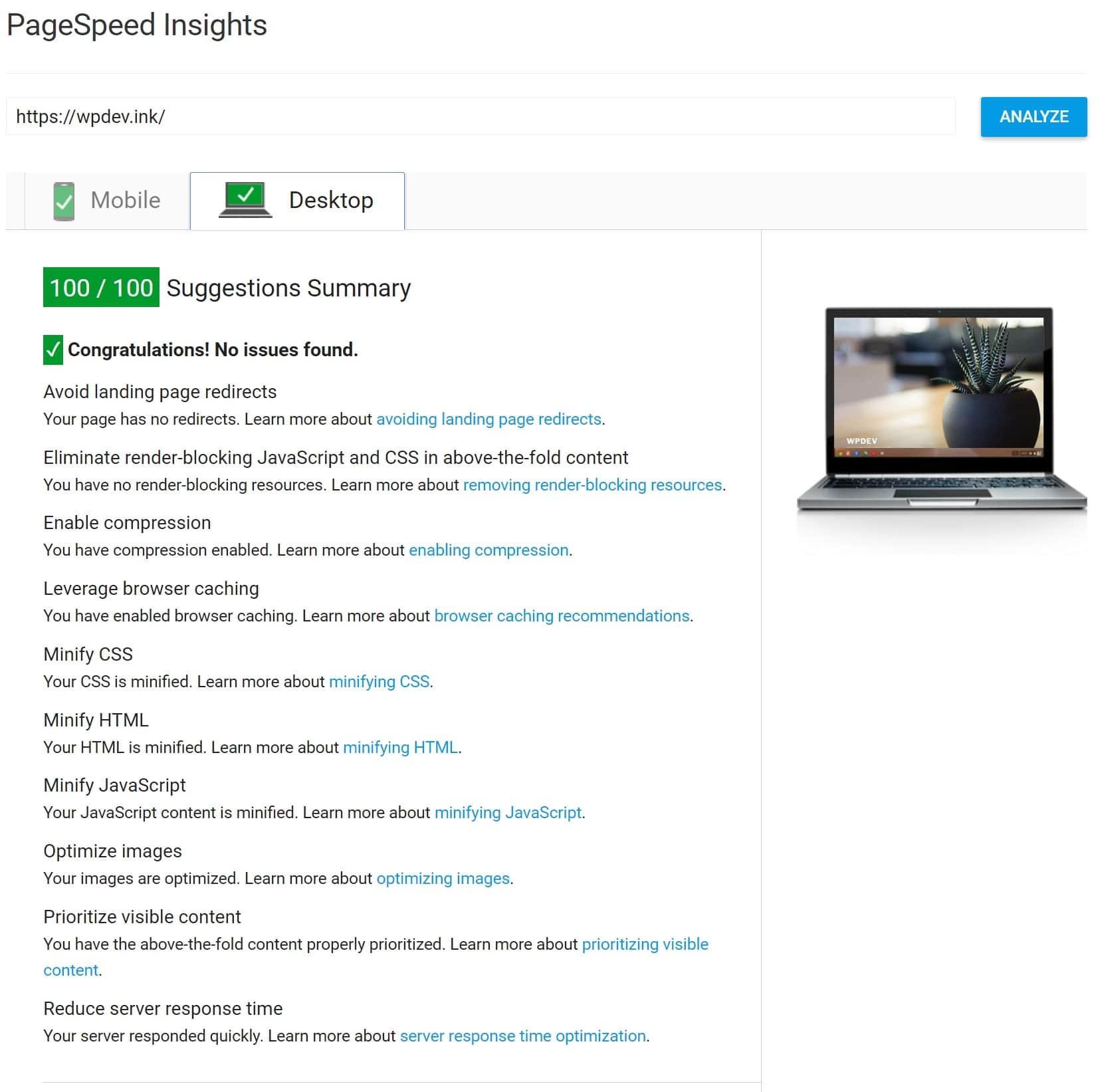 100/100 su PageSpeed Insights con Kinsta