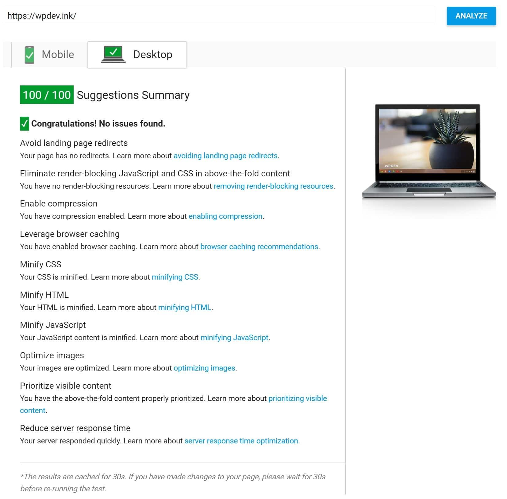 100 punti su Google PageSpeed Insights