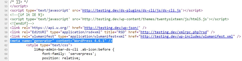 Versione di WordPress nel codice sorgente
