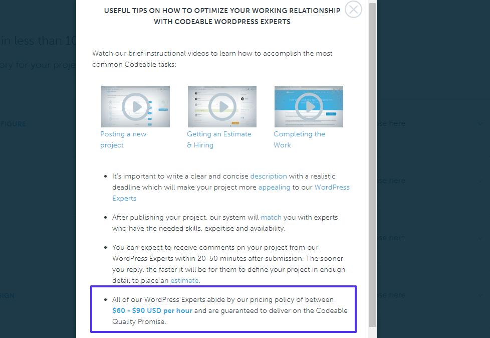 Codeable mostra questo a tutti coloro che cercano un freelancer