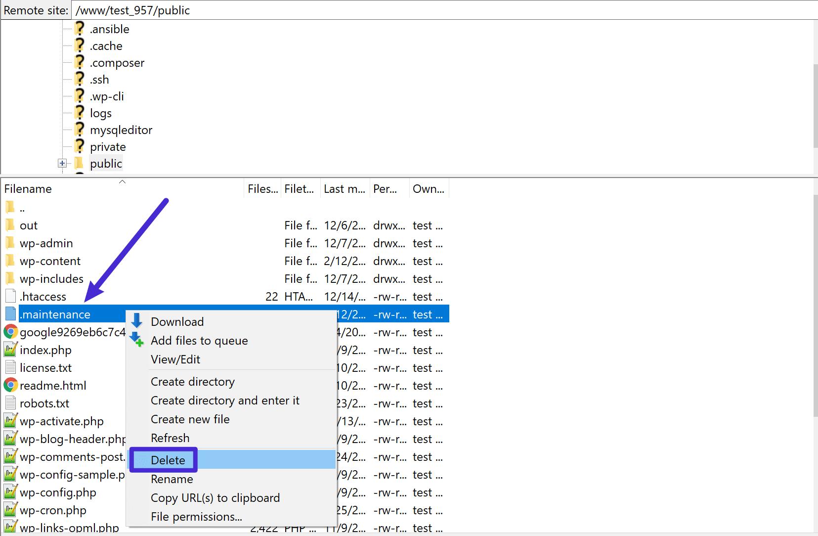 Eliminare il file .maintenance