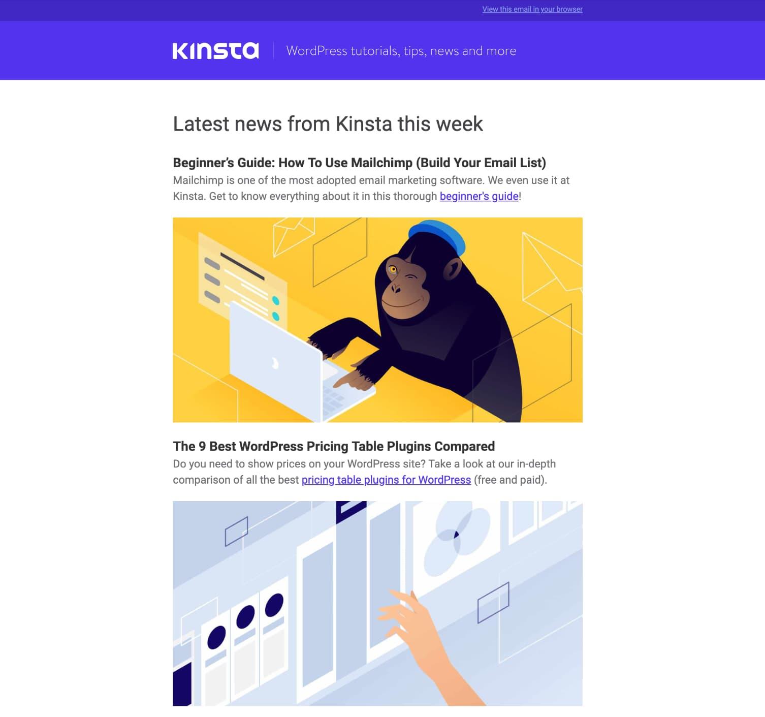 Il template della newsletter di Kinsta