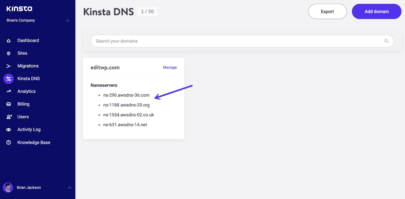 Vista DNS Kinsta - server dei nomi