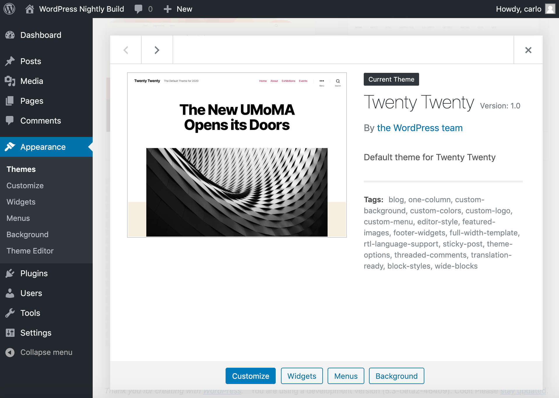 Il tema WordPress Twenty Twenty