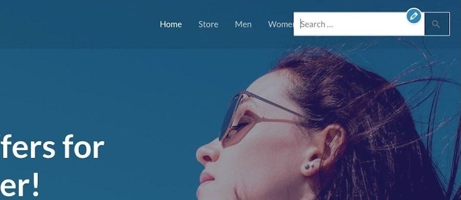 Esempio dell'aspetto di una barra di ricerca WordPress di base