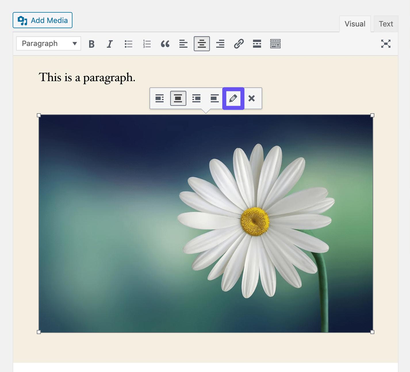 Apertura delle impostazioni dell'immagine nel Classic Editor