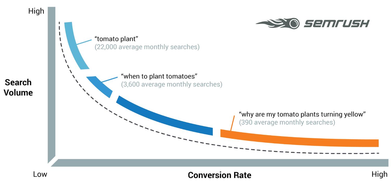 Parole chiave a coda lunga = più conversioni (Fonte immagine: semrush.com)