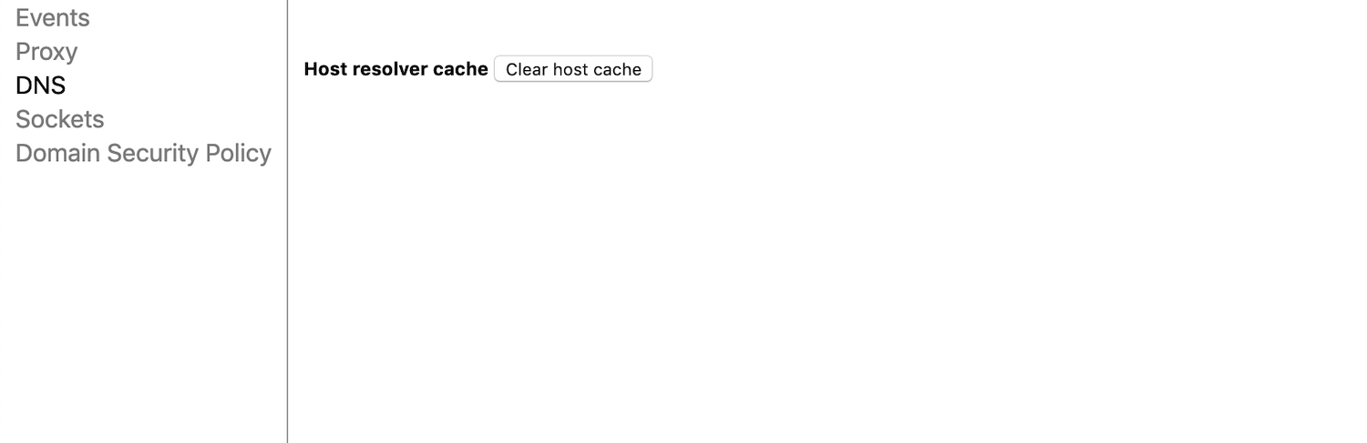 Il pulsante Clear host cache in Google Chrome