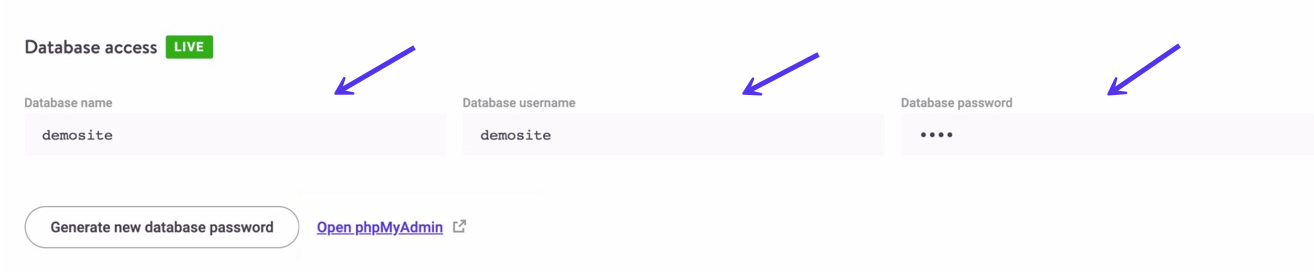 Accesso al database in MyKinsta