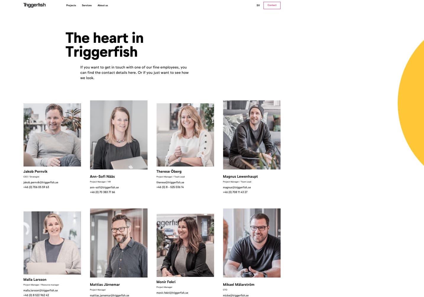 Triggerfish mostra le persone che lavorano dietro le quinte