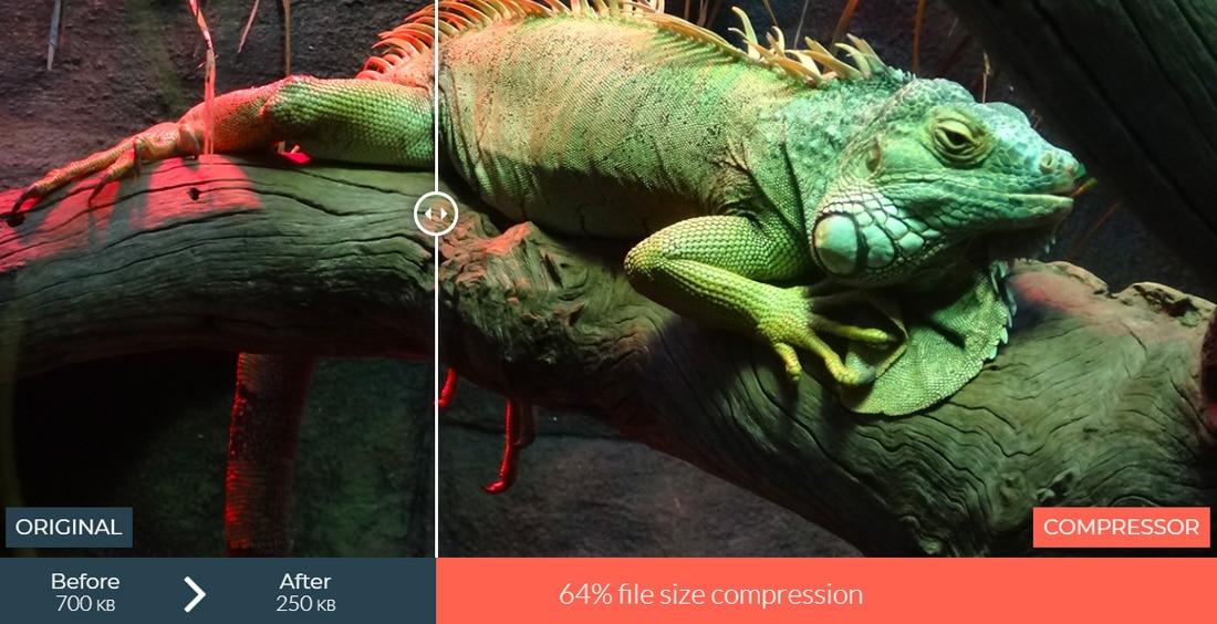 Comprimere le immagini con una perdita minima di qualità (Fonte immagine: Compressor.io)