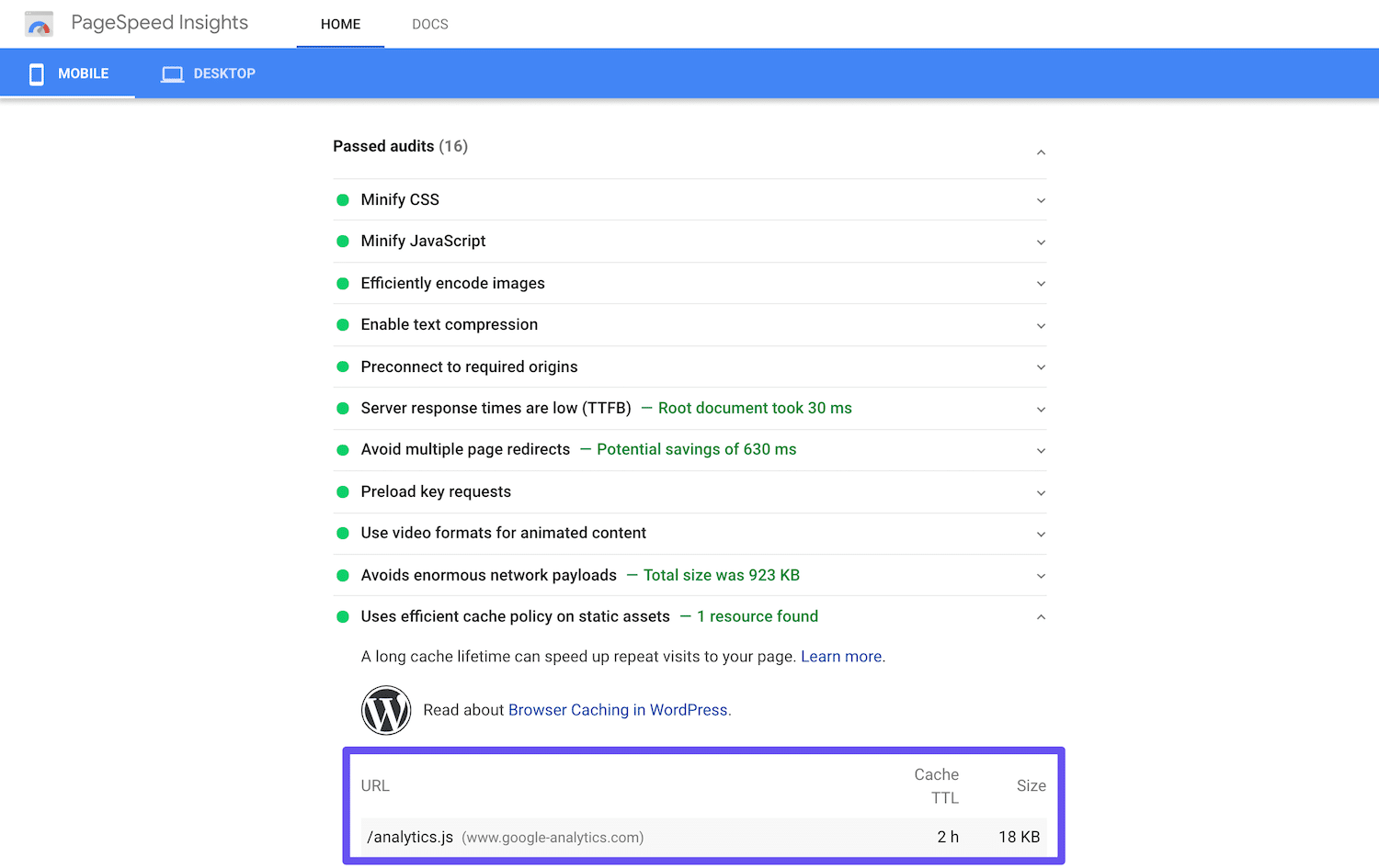 Google PageSpeed Insights ha superato il controllo degli script di Google Analytics