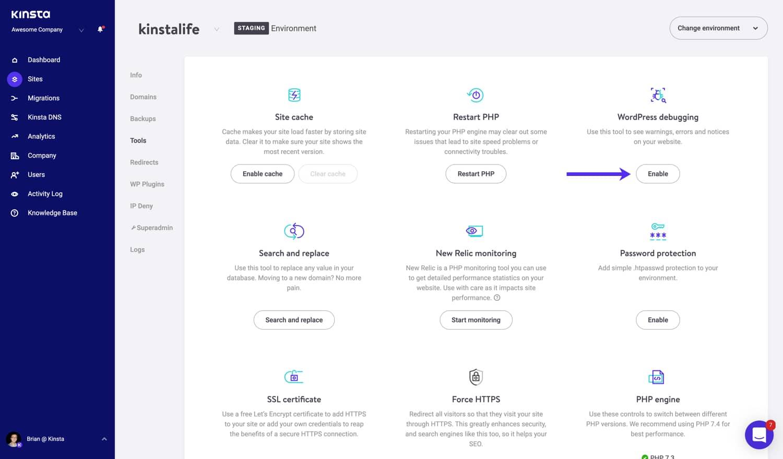 Attivare la modalità di debug di WordPress in MyKinsta.