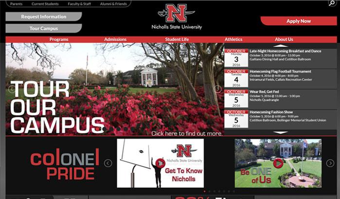 ニコルズ州立大学のwordpressサイト