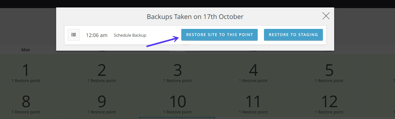 Restore WordPress from backup with WP Time Capsule