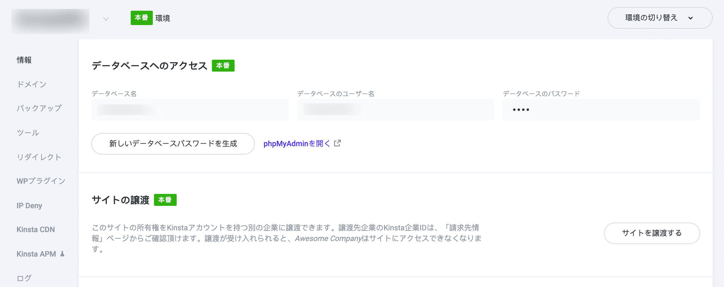 MyKinstaの「情報」タブ
