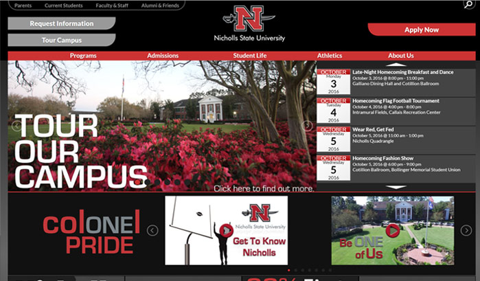 nicholls state university wordpress site