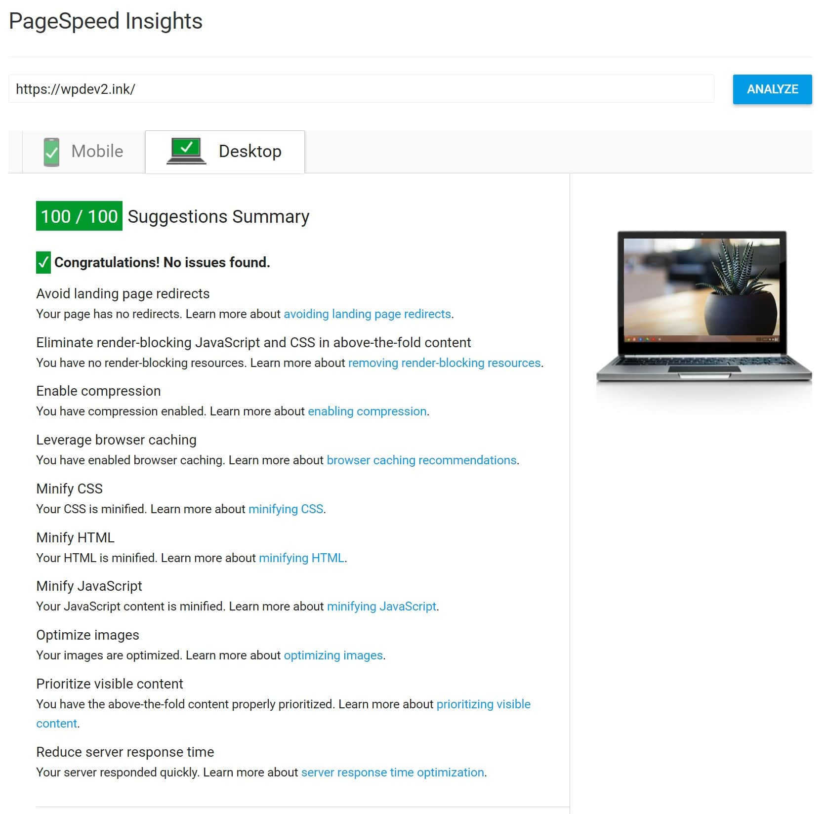 100/100 score op Google PageSpeed Insights