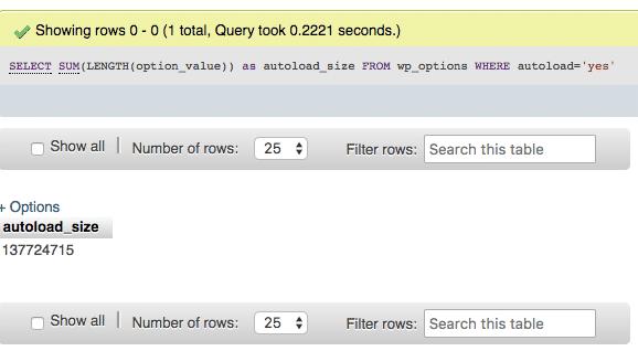 Niet goed: veel autoloaded data in de wp_options tabel