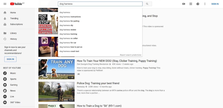 YouTube automatisch aanvullen
