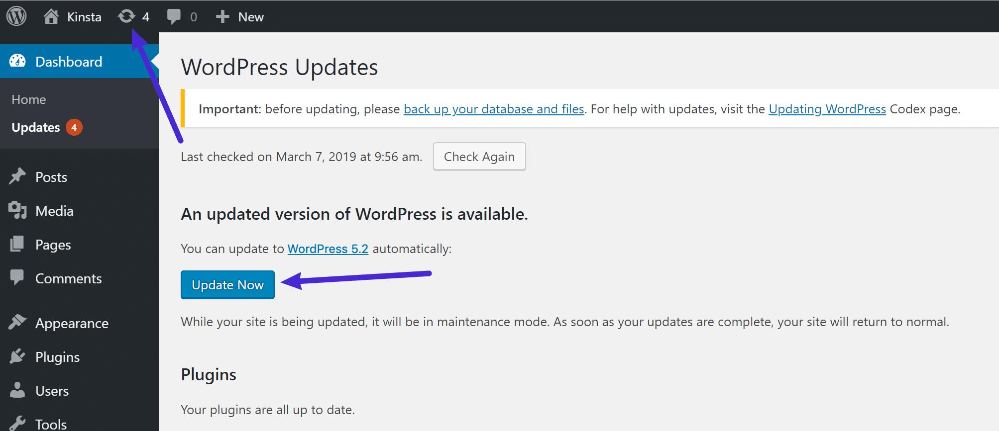 In het dashboard updaten naar WordPress 5.2
