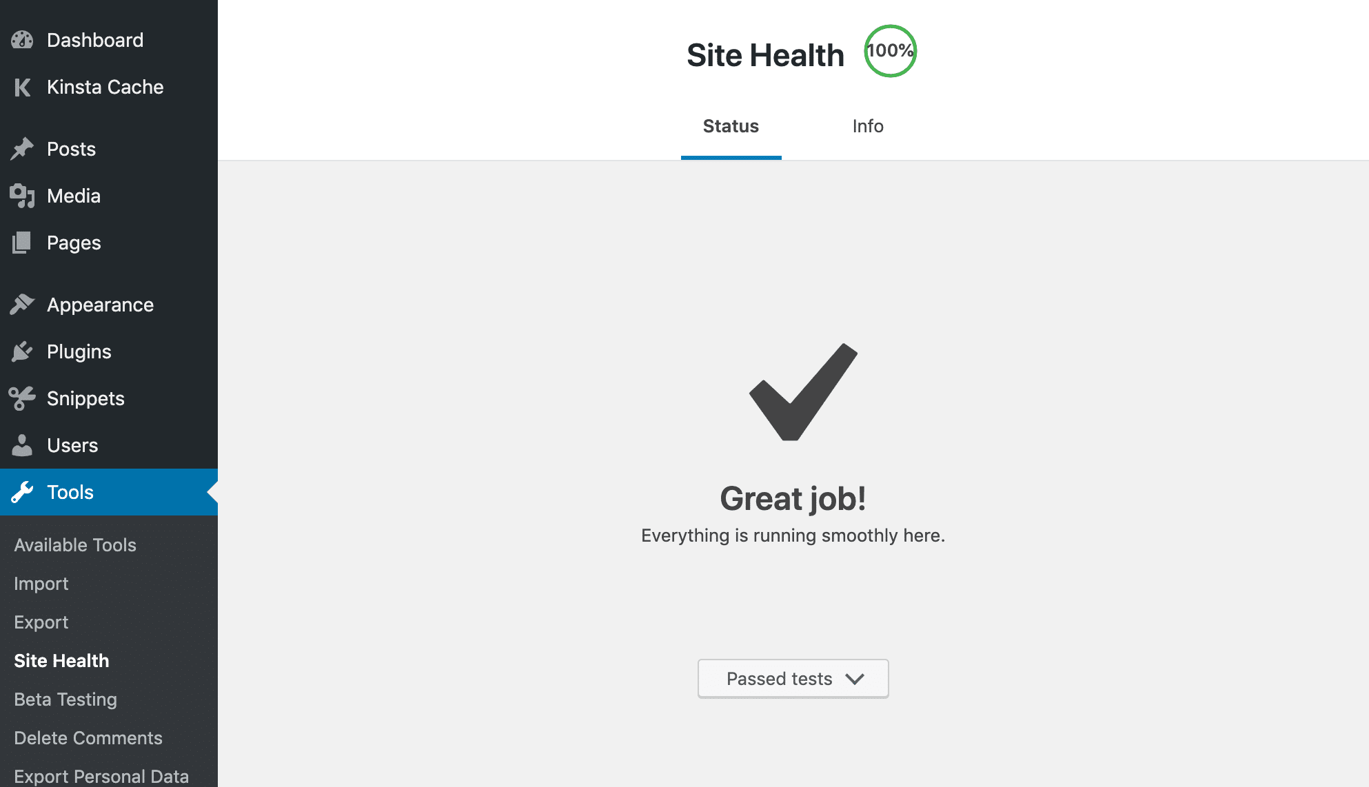 Site Health tool in WordPress - 100% score