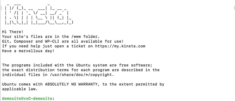 Kinsta SSH-beginscherm