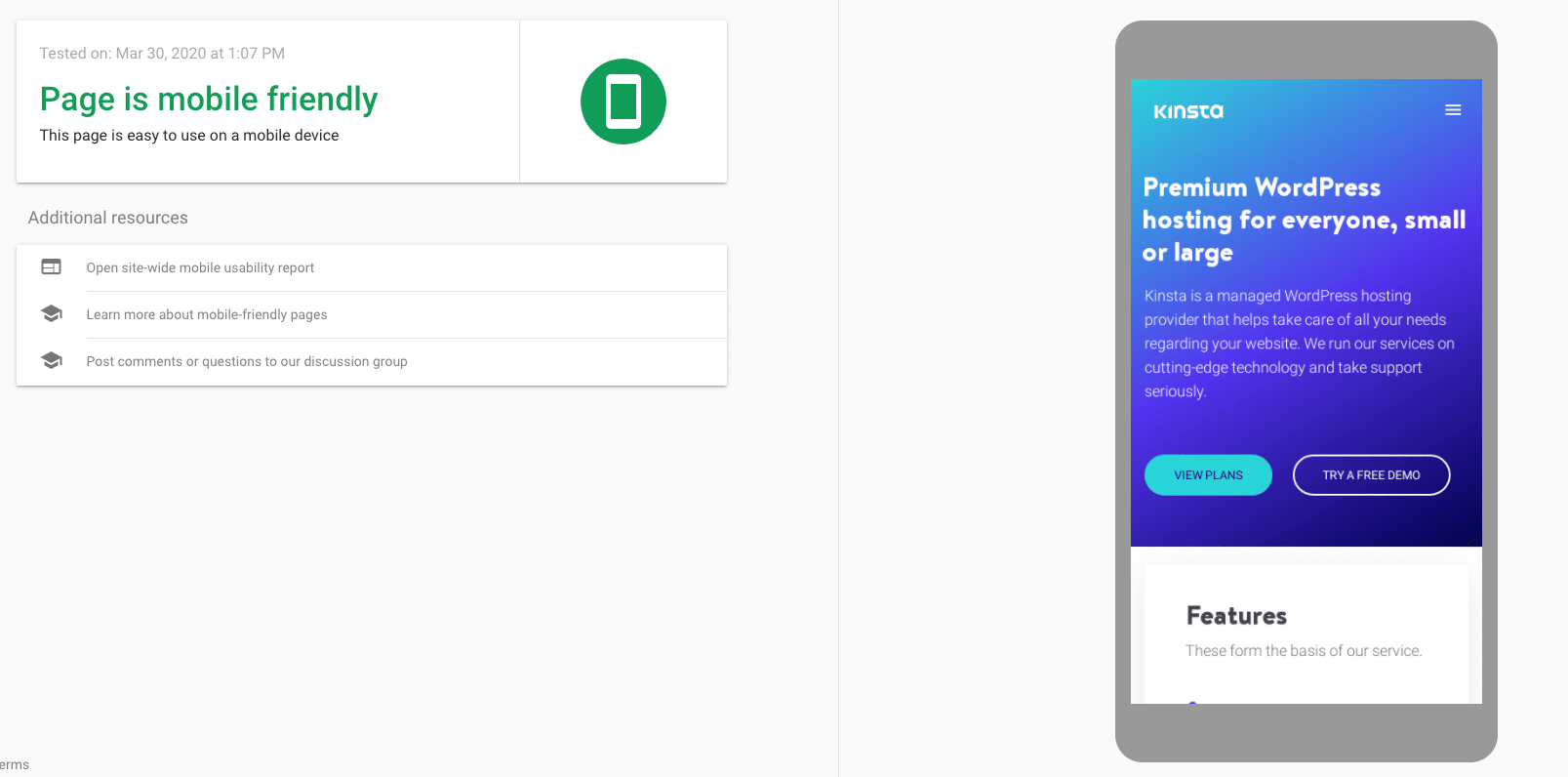 De mobile-friendly test van Google van de website van Kinsta