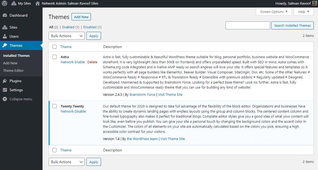 Het panel 'Themes' binnen een Network Admin dashboard