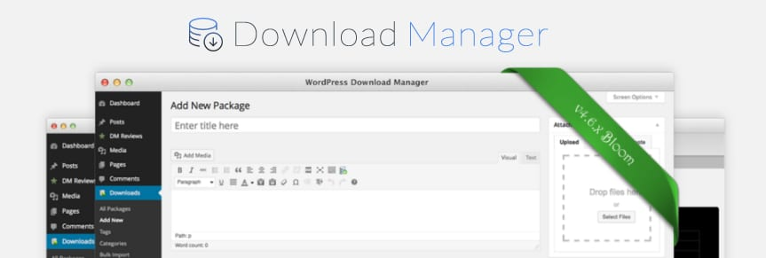 Plugin WordPress Download Manager pro