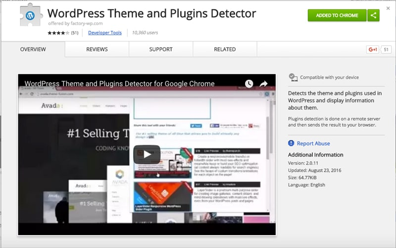 WordPress Theme and Plugin Detector