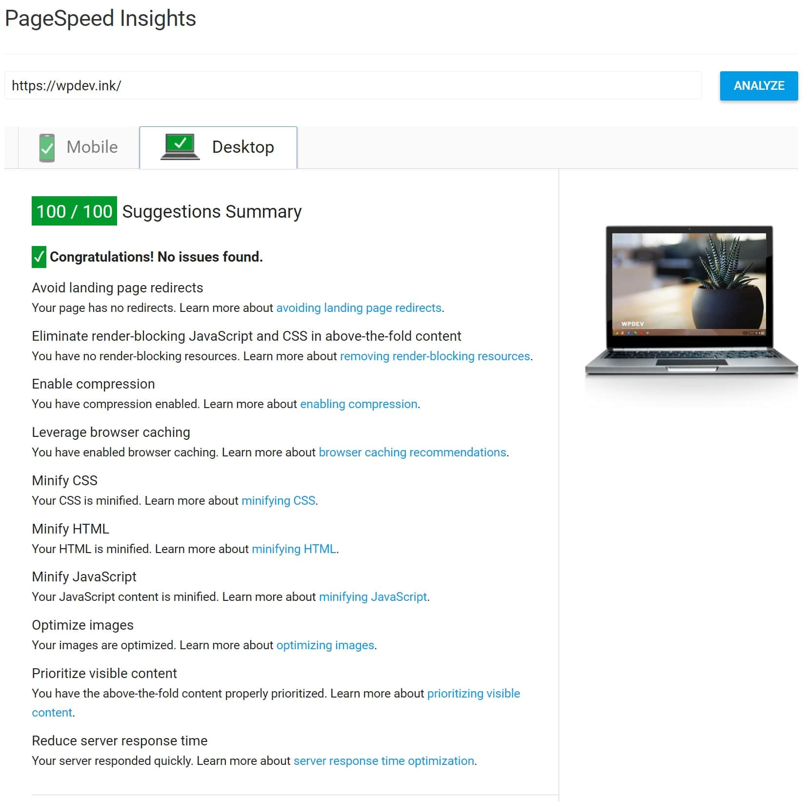 100/100 PageSpeed Insights com Kinsta