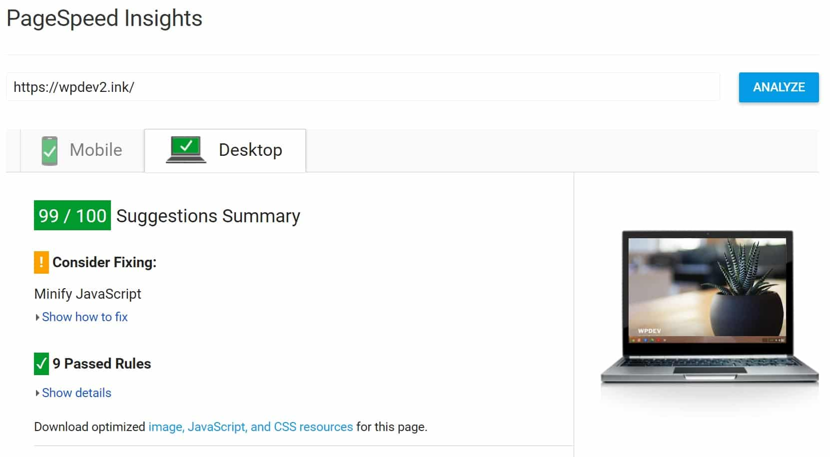 PageSpeed Insights após corrigir o tempo de resposta