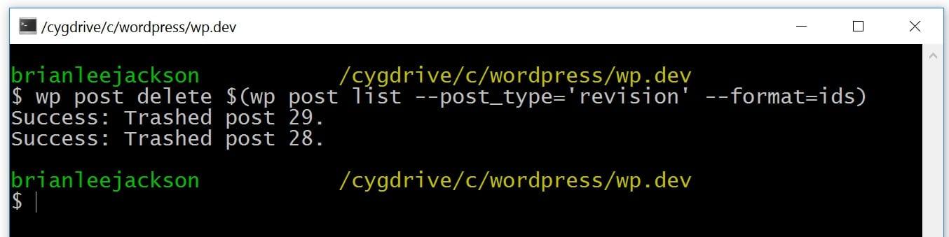WP-CLI eliminar revisões do WordPress