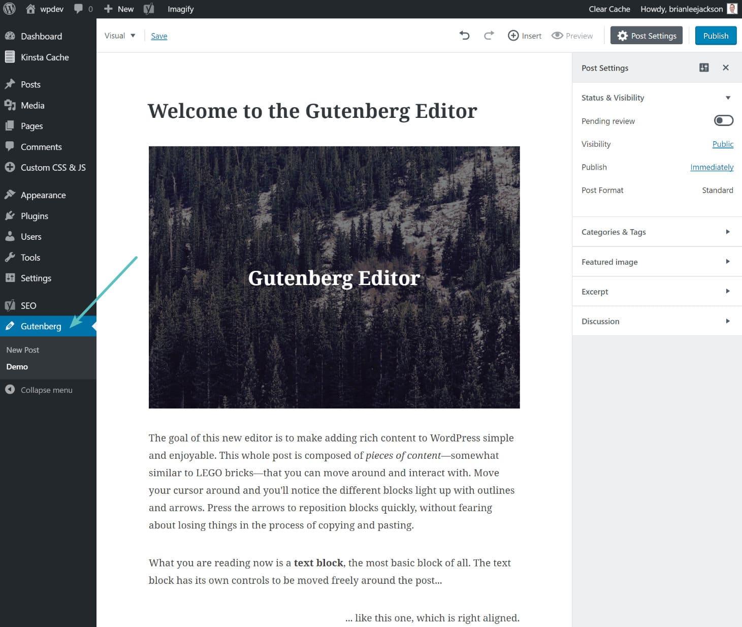 Editor demo do Gutenberg