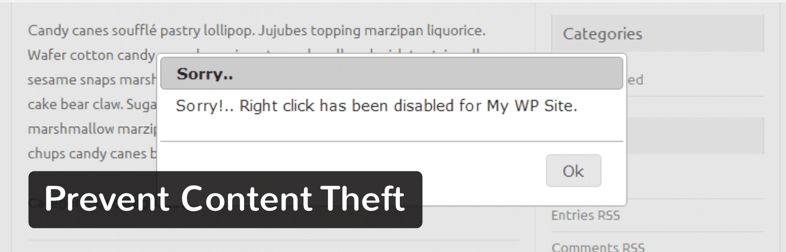 Plugin WordPress Prevent Content Theft