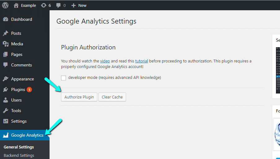 Autorizar o Painel do Google Analytics para WP