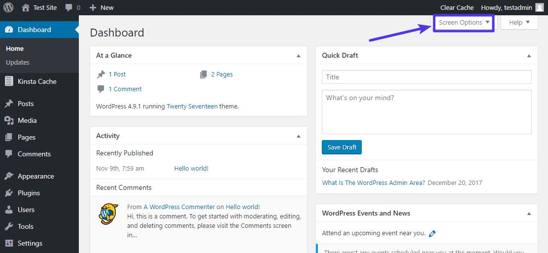 Opções de tela do painel de controle de administrador WordPress