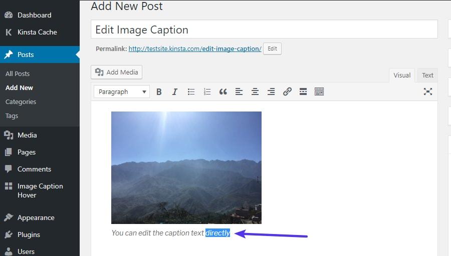 Edição de legendas de imagens já existentes no WordPress diretamente no editor WordPress