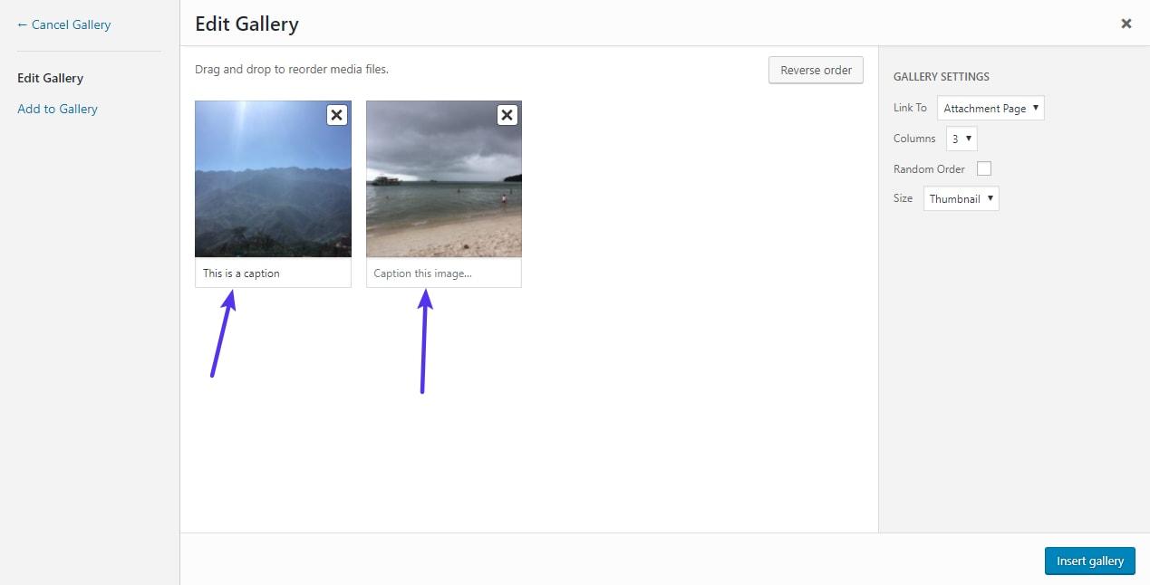 Editar as legendas para imagens em uma galeria WordPress