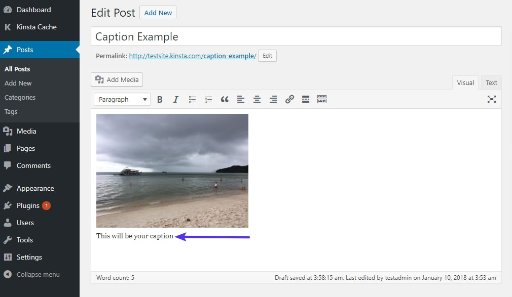 Um exemplo do aspeto de uma legenda de imagem no editor WordPress