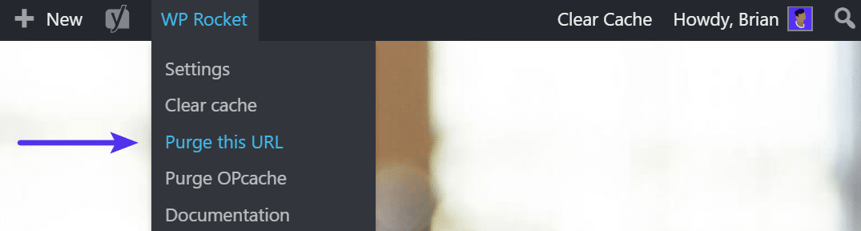 Limpeza de cache do WP Rocket em URL individual