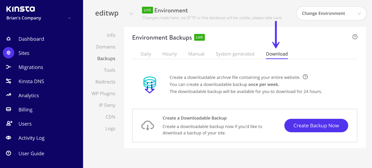 Download completo de backup do WordPress