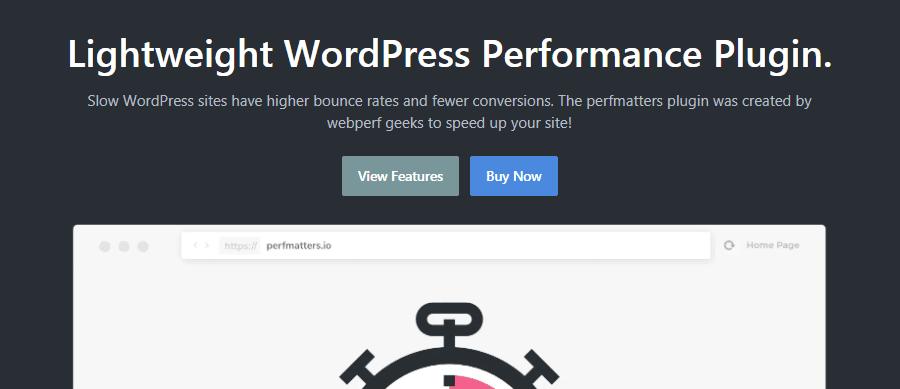 O plugin perfmatters WordPress