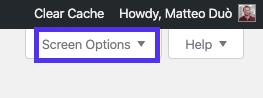 O separador Opções de ecrã no editor de menus