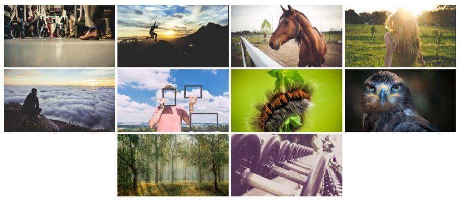 Galeria de Fotos por 10Web
