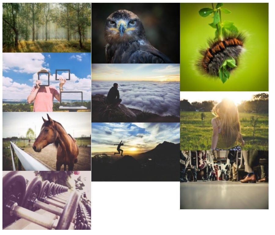 Galeria de Fotos de Supsystic