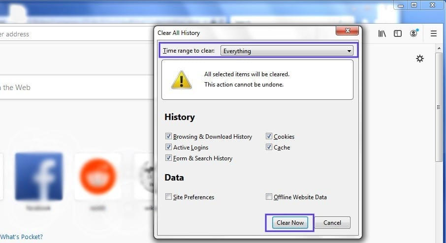O painel 'Clear History' no Firefox